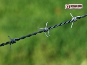 Barbed_Wire_01_SKYHALL_FENCE_SYSTEM