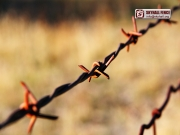 Barbed_Wire_04_SKYHALL_FENCE_SYSTEM