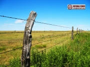 Barbed_Wire_07_SKYHALL_FENCE_SYSTEM